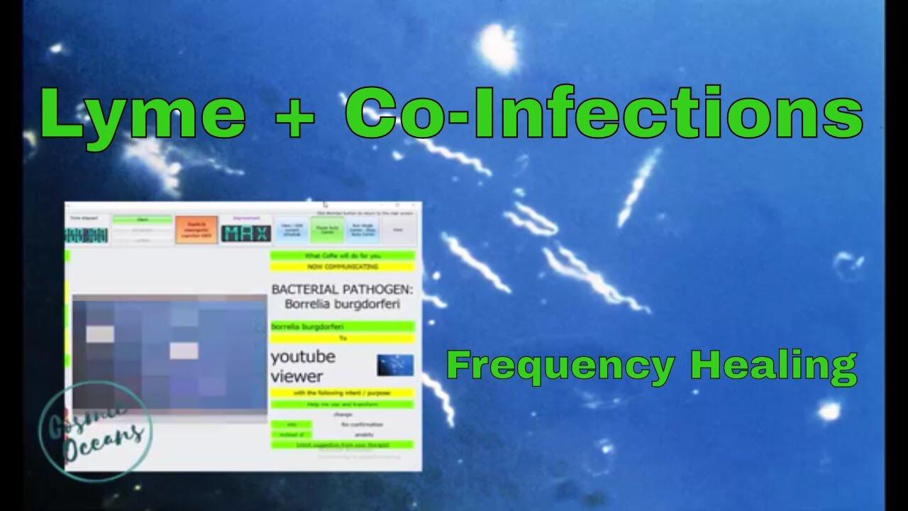 Borrelia Burgdorferi - Lyme Pathogen Frequency - Scalar Healing Energy Radionics - Pathogen Cleanse