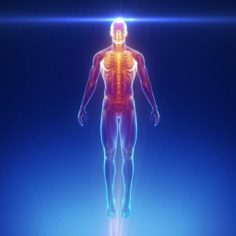 core body scan